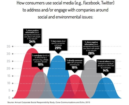 socialmedia-social-echo-2013